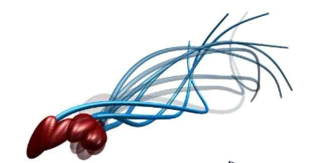 Fotoğraf: polymaths-lab.com