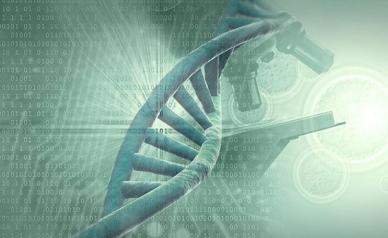 Çöp DNA - Junk DNA - Kodlanmayan DNA Dizisi Nedir?