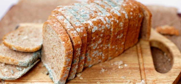 Küflü Ekmek Tüketirsek Ne Olur?