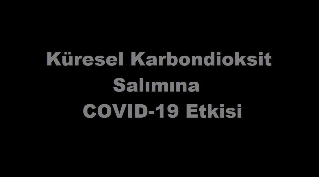 Küresel Karbondioksit Salımına COVID-19 Etkisi