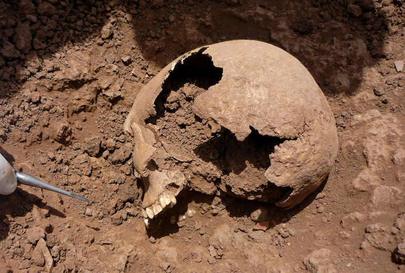 Andlardaki birçok arkeolojik alandan seksen dokuz iskelet, çalışmadaki antik DNA'ları sağladı. C: Guido Valverde