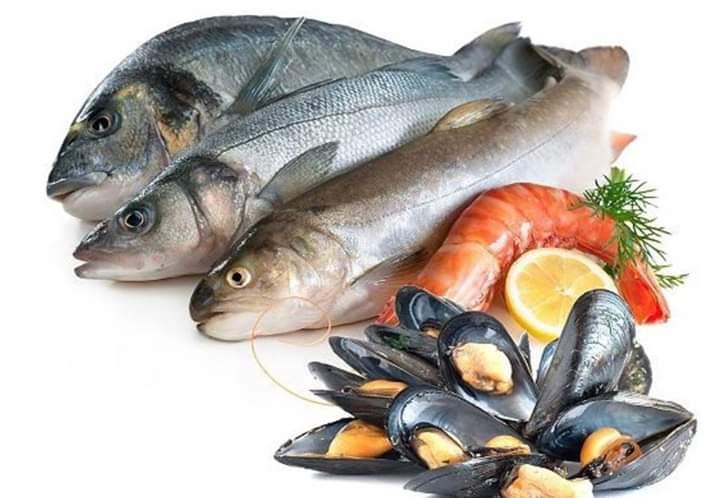 Balıklarda Şarbon olmaz!...