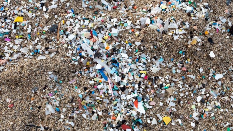 Mikroplastikler gibi kirleticiler nasıl yayılır?