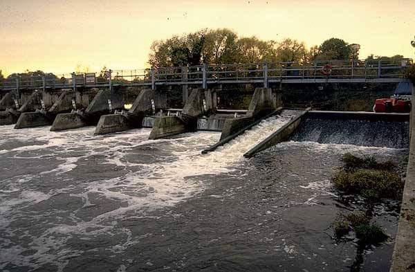 Nehirlerimizde doğal balık populasyonları niçin azaldı?