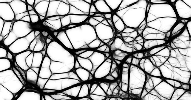 """Popüler Bilim ve Gelecek """"Ayna Nöronlar"""""""