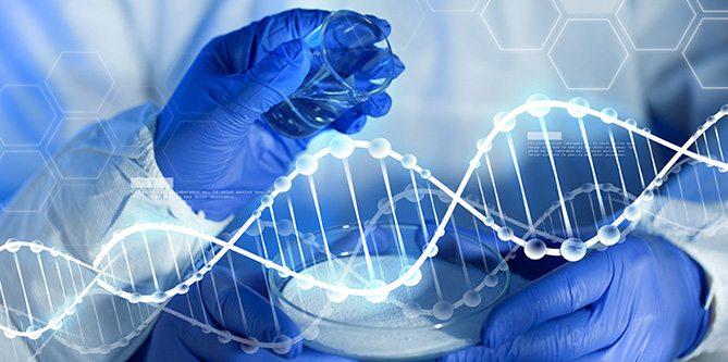Genetik mühendislik ile 'Gen düzeltme' işlemi ilk kez insan vücudunda denendi