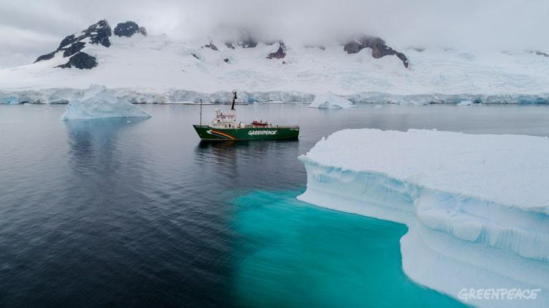 Plastik kirliliği Antarktika'ya kadar ulaştı