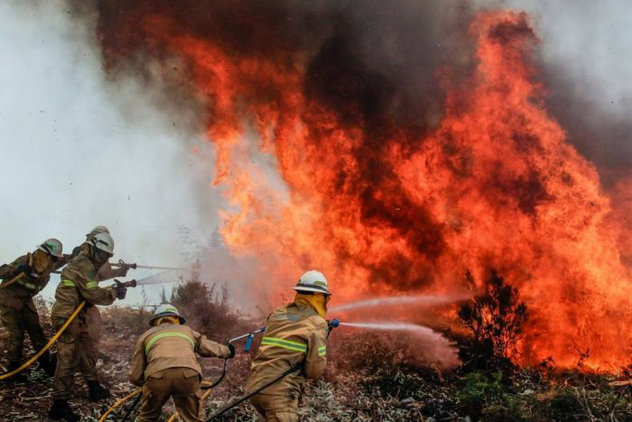 İklim değişikliğinin orman yangınlarına etkisi – Bilimsel makaleler