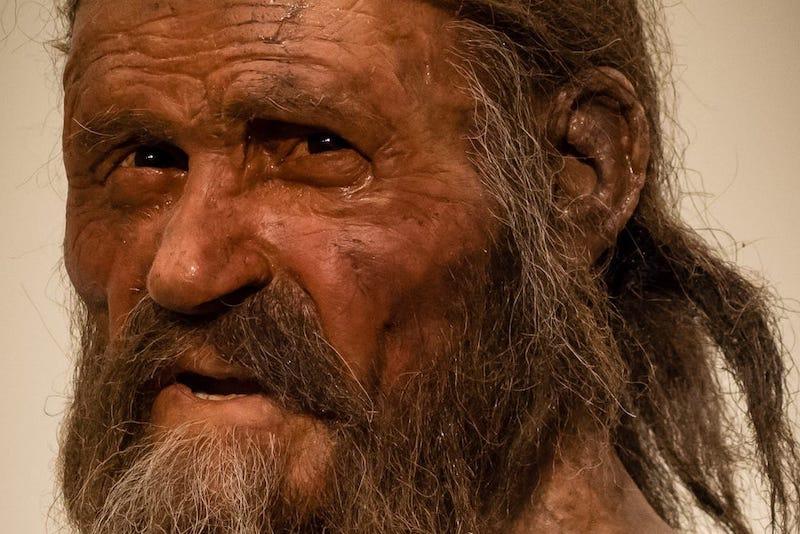 Yaklaşık 5.200 yıl önce Avrupa Alplerinde yaşayıp ölen Buz Adam Ötzi'yi tasvir eden bir rekonstrüksiyon. Ötzi'nin doğal olarak mumyalanmış kalıntıları, Alman dağcılar tarafından 19 Eylül 1991'de keşfedilmişti.