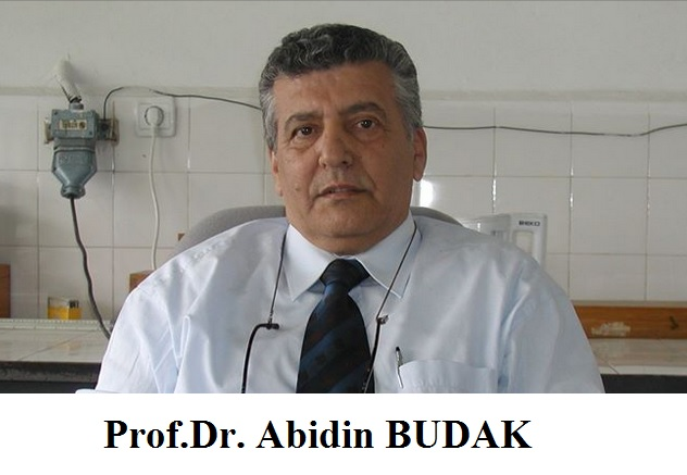 Prof.Dr. Abidin BUDAK