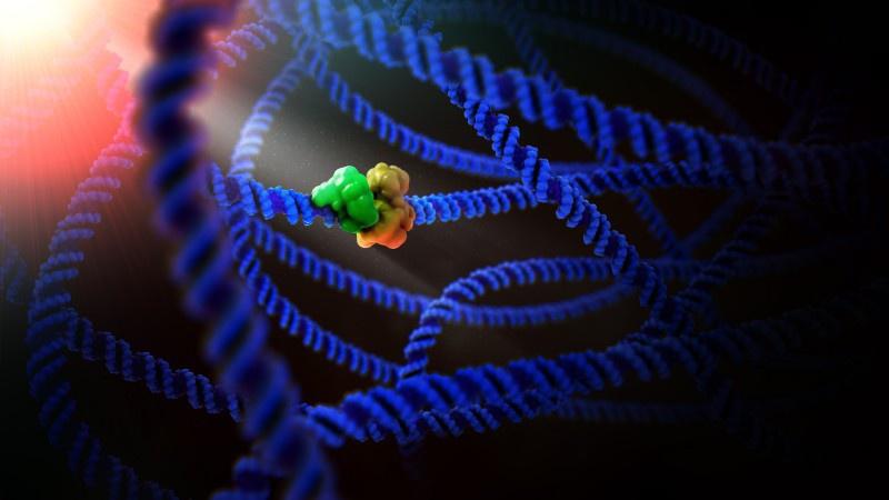 Neden tasarlanmış proteinler, doğal proteinlerin aksine yüksek sıcaklıklara daha dayanaklıdır?
