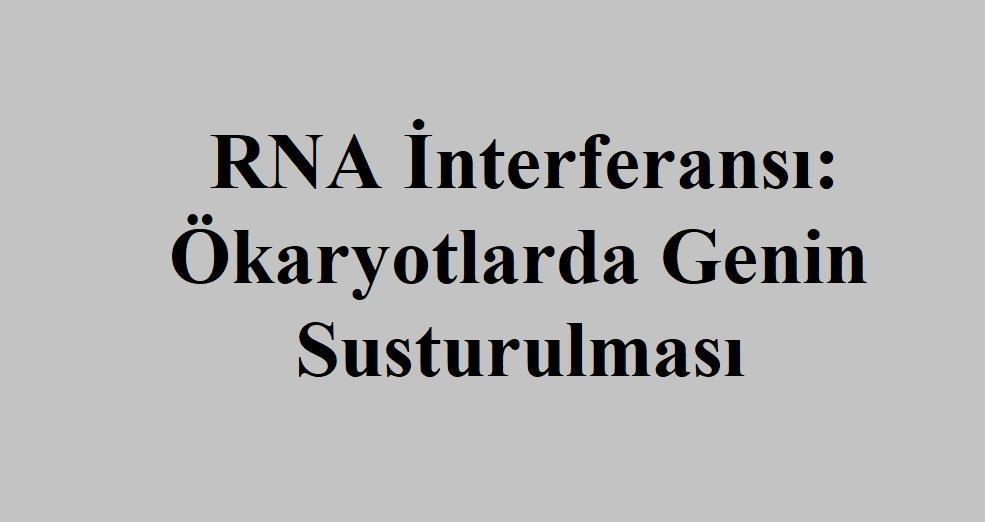 RNA İnterferansı: Ökaryotlarda Genin Susturulması