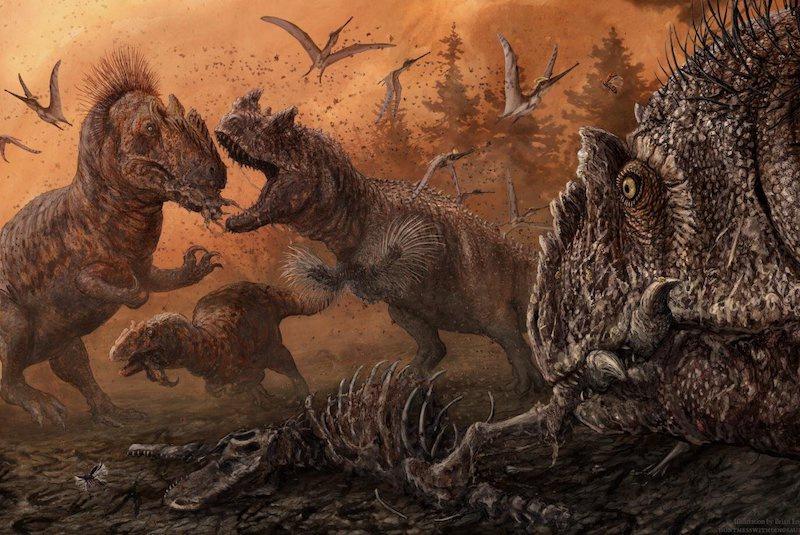 Allosaurus ve Ceratosaurus gibi büyük theropod dinozorları, birbirleri de dahil olmak üzere hemen hemen her şeyi yedi. C: PLOS ONE