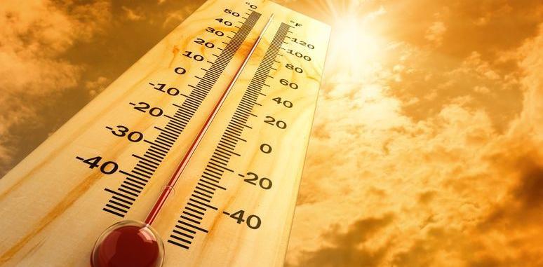 Organik Tarım ve Toprak Sıcaklığı