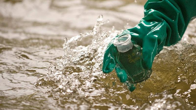 Bakterilerin ürettiği biyofilmler su kirliliğinin giderilmesinde kullanılabilir mi?