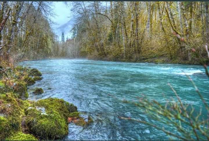 Ekosistemler ve temiz su