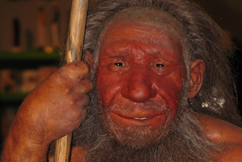 Neandertallerin Yok Oluş Sebebine Dair Bilimsel Bakış Değişti