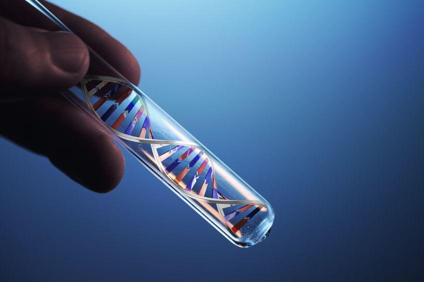 DNA izolasyon Analiz Yöntemi