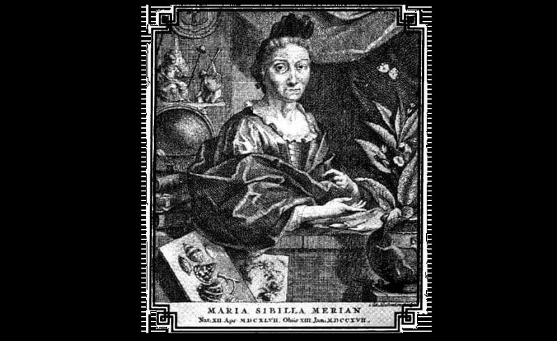 Maria Sibylla Merian kimdir?