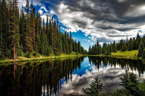 Toprak sağlığı ve su güvenliği