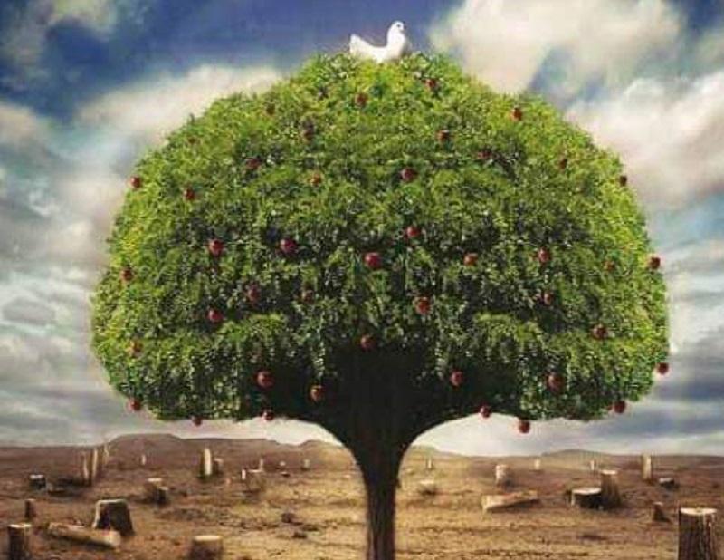 Ekosistemleri bozmadan tüketim ve üretim mümkün mü?