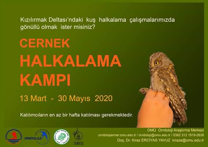 Cernek Kuş Halkalama Kampı