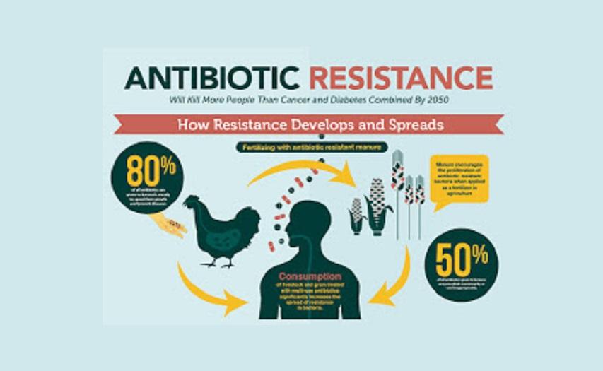 Mevcut antibiyotik tedavilerine karşı direnç