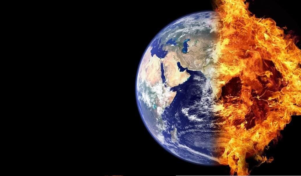 Dünya'da altıncı kitlesel yok oluş çok yakın..