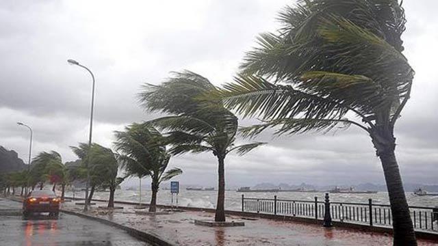 İklim değişiyor, Türkiye tropikal iklime geçiyor