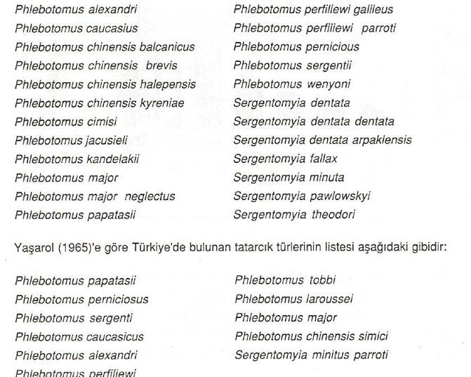 Türkiye'de Bulunan Tatarcık Türleri