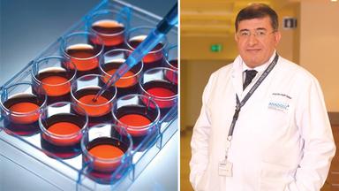 Kök Hücre Çalışmaları Kanseri Ortadan Kaldırabilecek mi?